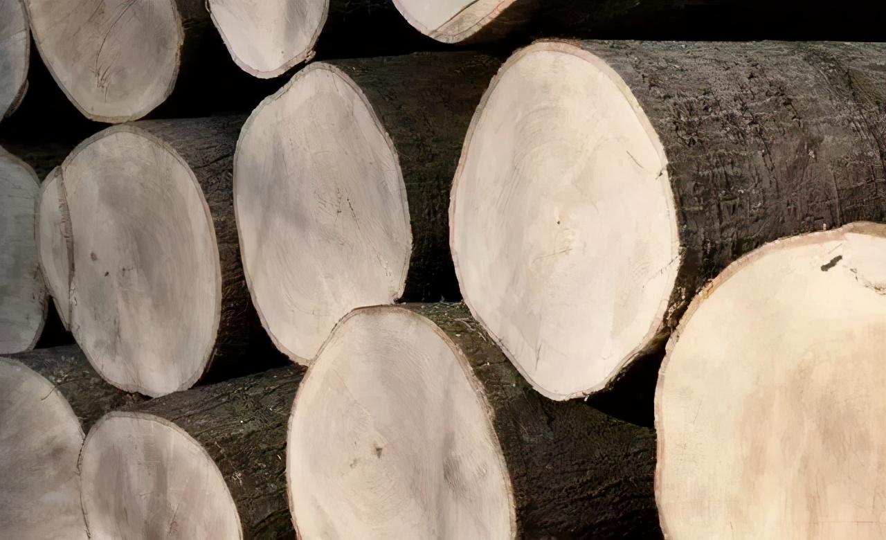 实木家具哪种木材好?内行人一篇讲全,看完选家具事半功倍