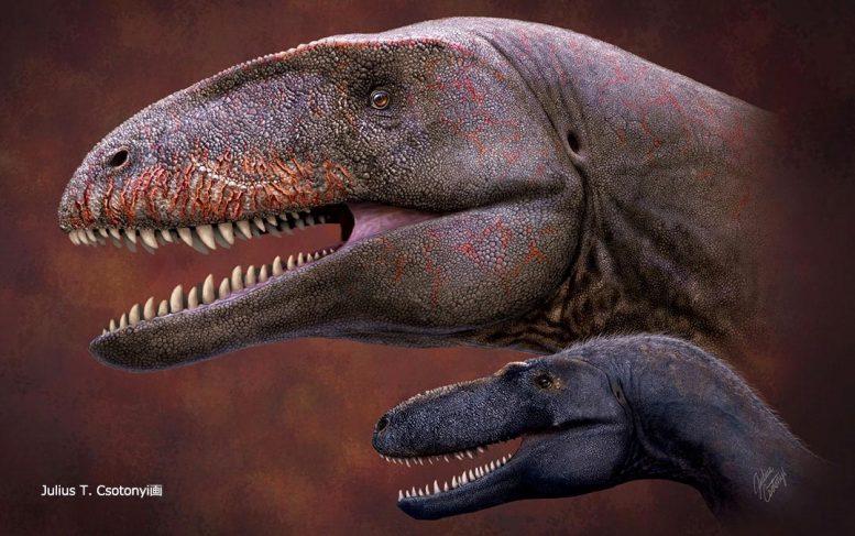 超猛!连霸王龙都吃!新发现的肉食龙,比当时的霸王龙还要大5倍
