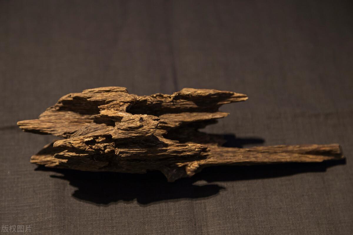 沉香木是什么?沉香木是怎么形成的