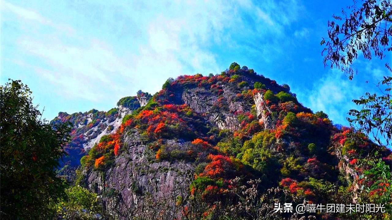 离线最近的翠华山红叶观赏攻略,一天即可往返