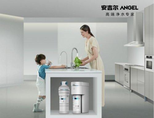 比较好的净水器品牌有哪些(全球销量比较好的净水器)