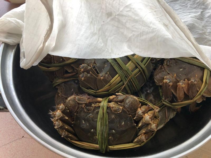 保存螃蟹时,最忌直接放冰箱,老渔民教您一招,放7天都鲜活好吃